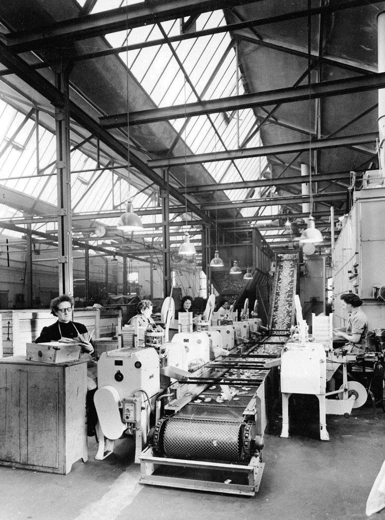 Vue de l'atelier de confection des boîtes d'allumettes à la manufacture SEITA de Metz, vers 1960.